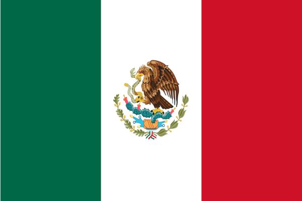 メキシコ チレスエンノガダ メキシコ料理 ヴィーガン