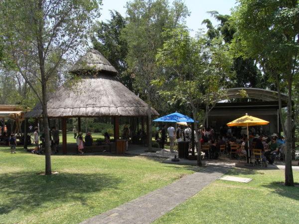 メキシコ 植物園 モレロス